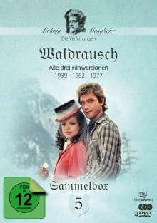 Die Ganghofer Verfilmungen Box 5:  Waldrausch, 3 DVDs