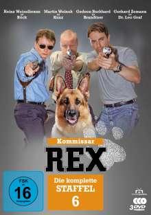 Kommissar Rex Staffel 6, 3 DVDs