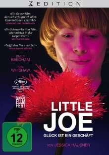 Little Joe - Glück ist ein Geschäft, DVD
