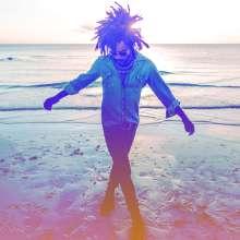 Lenny Kravitz: Raise Vibration, CD