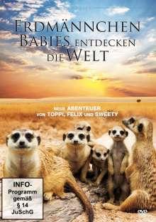 Erdmännchen Babies entdecken die Welt, DVD