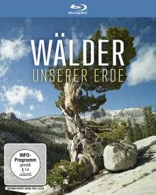 Wälder unserer Erde (Blu-ray), Blu-ray Disc