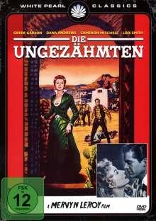Die Ungezähmten, DVD