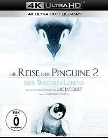 Die Reise der Pinguine 2 - Der Weg des Lebens (Ultra HD Blu-ray & Blu-ray), 1 Ultra HD Blu-ray und 1 Blu-ray Disc