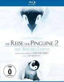 Die Reise der Pinguine 2 - Der Weg des Lebens (Blu-ray), Blu-ray Disc