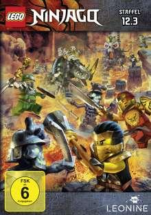 LEGO Ninjago 12 Box 3, DVD