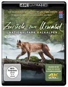 Zurück zum Urwald - Nationalpark Kalkalpen (Ultra HD Blu-ray), Ultra HD Blu-ray