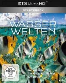 Wasserwelten: Starterbox (Ultra HD Blu-ray), Ultra HD Blu-ray