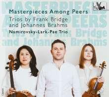 Namirovsky-Lark-Pae Trio, CD