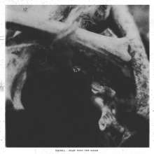 Kringa: Feast Upon The Gleam (180g), LP