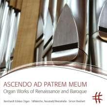 Simon Reichert - Ascendo Ad Patrem Meum, CD