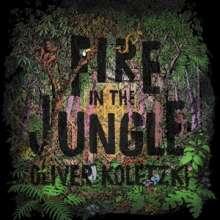 Oliver Koletzki: Fire In The Jungle, LP