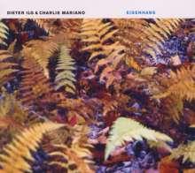 Dieter Ilg (geb. 1961): Eisenhans, CD