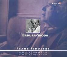 Franz Schubert (1797-1828): Klaviersonaten D.784 & D.959, CD