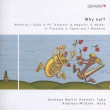 Andreas Martin Hofmeir & Andreas Mildner - Why not?, CD