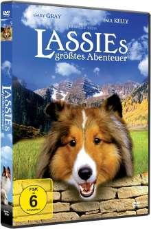 Lassies größtes Abenteuer, DVD