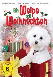 Ein Welpe zu Weihnachten, DVD