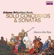 Johann Sebastian Bach (1685-1750): Solo-Konzerte & Sonaten (Musica Alta Ripa Edition / Exklusiv für jpc), 8 CDs