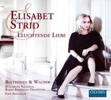 Elisabet Strid - Leuchtende Liebe, CD
