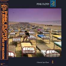 Pink Floyd: A Momentary Lapse Of Reason (Digisleeve), CD