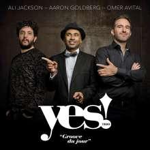 Yes! Trio (Ali Jackson, Aaron Goldberg & Omer Avital): Groove Du Jour, CD
