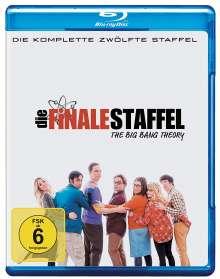 The Big Bang Theory Staffel 12 (finale Staffel) (Blu-ray), 2 Blu-ray Discs