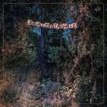 Eyelids: The Accidental Falls, LP