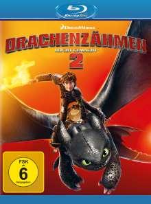 Drachenzähmen leicht gemacht 2 (Blu-ray), Blu-ray Disc