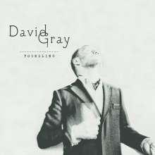 David Gray: Foundling, CD