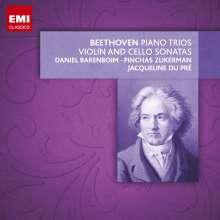 Ludwig van Beethoven (1770-1827): Violinsonaten Nr.1-10, 9 CDs