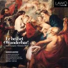 Er heißet Wunderbar! - Barocke Weihnachtskantaten, CD