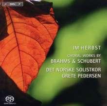 Norwegian Soloist's Choir - Im Herbst, Super Audio CD