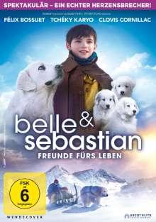 Belle und Sebastian 3 - Freunde fürs Leben, DVD