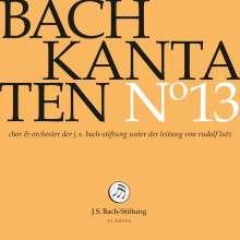 Johann Sebastian Bach (1685-1750): Bach-Kantaten-Edition der Bach-Stiftung St.Gallen - CD 13, CD