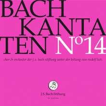 Johann Sebastian Bach (1685-1750): Bach-Kantaten-Edition der Bach-Stiftung St.Gallen - CD 14, CD
