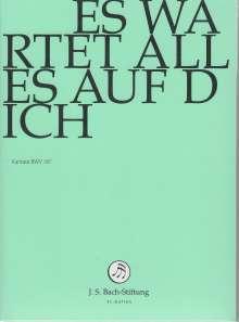 Johann Sebastian Bach (1685-1750): Bach-Kantaten-Edition der Bach-Stiftung St.Gallen - Kantate BWV 187, DVD