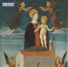 Vox Poetica Ensemble - Ave Virgo gloriosa, CD