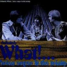 Brian Auger: Definitely What!, CD