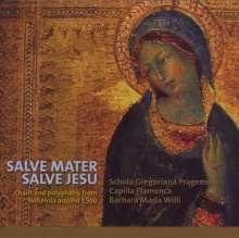 Salve Mater Salve Jesu, CD