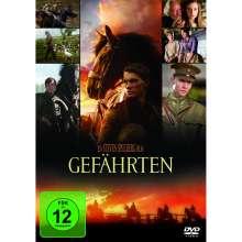 Gefährten, DVD