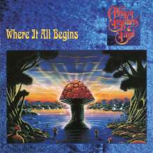 The Allman Brothers Band: Where It All Begins (180g), 2 LPs