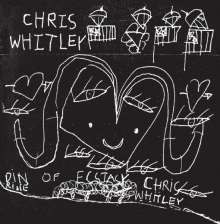 Chris Whitley: Din Of Ecstasy (Music-On-CD-Edition), CD