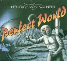 Heinrich von Kalnein (geb. 1960): Perfect World, CD