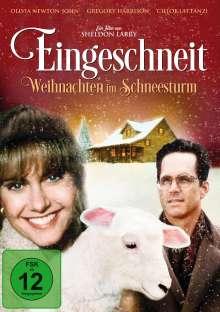Eingeschneit - Weihnachten im Schneesturm, DVD
