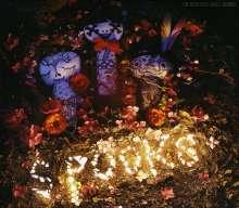 The Beautiful Girls: Spooks, CD