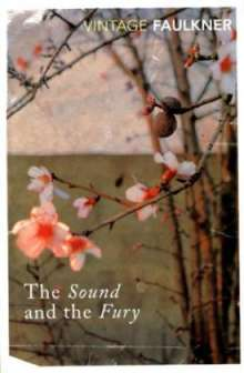 William Faulkner: The Sound and the Fury, Buch