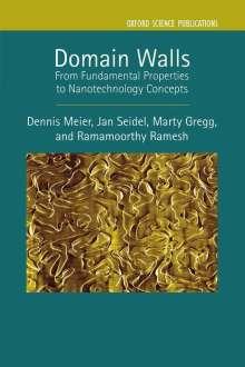 Dennis Meier: Domain Walls: From Fundamental Properties to Nanotechnology Concepts, Buch