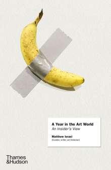 Matthew Israel: A Year in the Art World, Buch