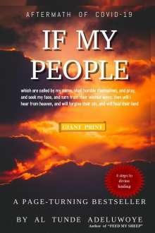 Al T Adeluwoye: If My People, Buch