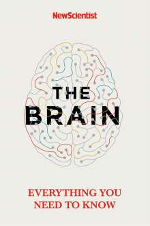 Alison George: The Brain, Buch